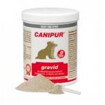 Gravid - 1 kg - alates tiinuse 5. nädalat