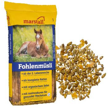Fohlen-Müsli 20 kg - varssadele ja noorhobustele müsli