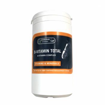 B-vitamiinide kompleks 450g