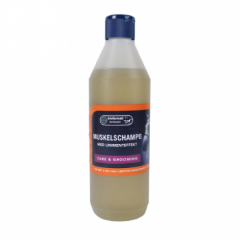 Šampoon linimendi efektiga 500ml