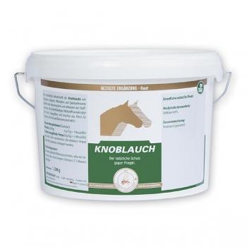 Küüslaugupulber - knoblauch 1,5 kg