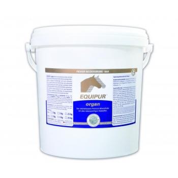 ORGAN 5 kg pelletid - baasmineraal - varsad, aretus- ja sporthobused - EQUIPUR