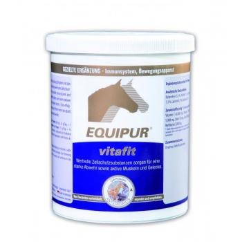 VITAFIT 1 kg - antioksüdandid, tsink ja aminohapped - EQUIPUR
