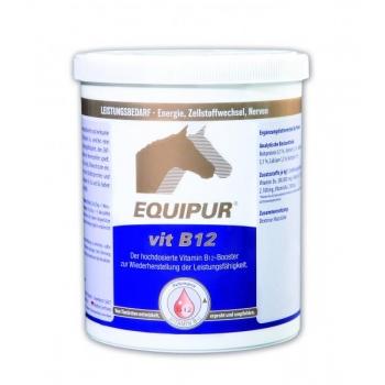 VITAMIIN B12 - 1 kg - EQUIPUR