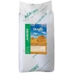 Stroh 10 kg - põhk (oder ja nisu)