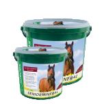 Seniormineral - teraviljavaba mineraal eakatele hobusele