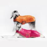 Tekk koerale Tipsy - roosa, seljapikkus 64 cm
