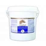ELEKTROLYT PLUS 7 kg - elektrolüüdid pulbrina- EQUIPUR